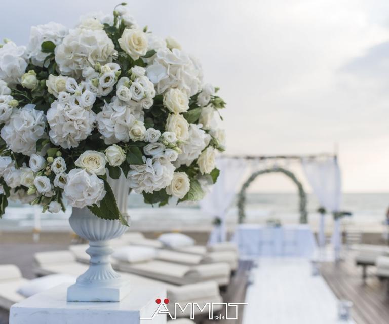 wedding struttura rito in spiaggia (19)